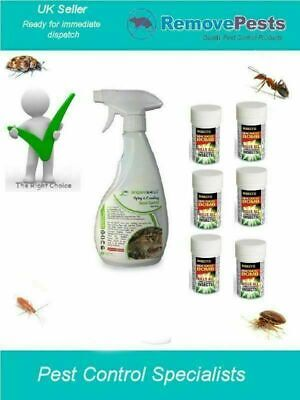 Fleas Flea  Killer Bomb poison spray room treatment HSE Approved 6 pack IN