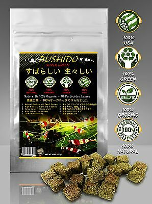 25 PIECE CATAPPA BLEND LEAVES Cherry Red Bee Shrimp 100%  NO Pesticides 5G