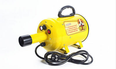 220V 2800W Pet Grooming Dryer Hair Dryer Pet Hairdryer Pet Chit Machine #Yellow
