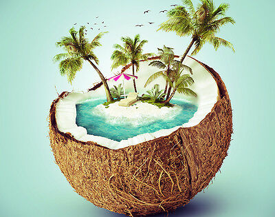 Island Coconut new* x 100 ml fragrance oil, for candles, melts, soap, burners.