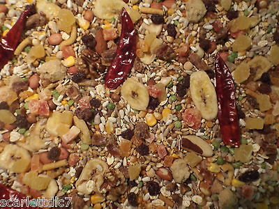 Tidymix Parrot Seed Bird 1kg - less waste 32 ingredients