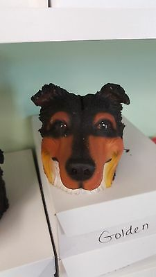 Tricolor Collie Money Bank Collectible Resin Dog Head
