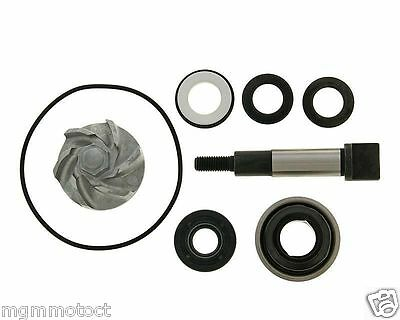 Kit Revisione Pompa Acqua Honda Sh 300