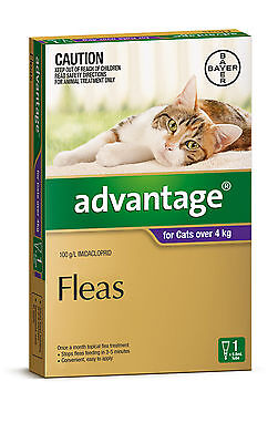 Advantage for Cats Over 4kg (Purple) Single, 4, 6 & 12 Packs