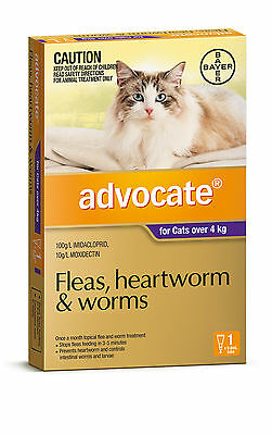 Advocate for Cats Over 4kg (Purple)  Single, 3, 6 & 12 Packs