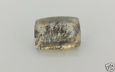 Quarzo Dandrite 6,64 ct AAA