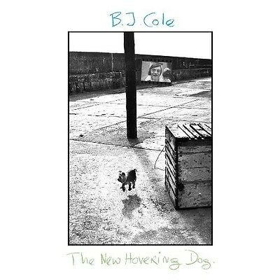 The New Hovering Dog - COLE BJ [LP]