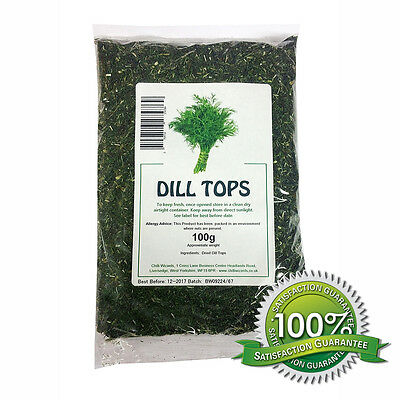 Dill Weed Tops - 100g Dried Herb - Chilli Wizards
