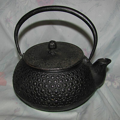 Vintage Tetsubin Signed Cast Iron Tea Pot with strainer Very Good