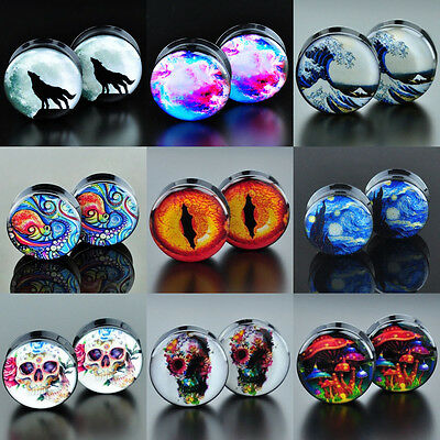 Acrylic Ear Tunnel Plugs Screw Fit Stretcher Expander Gauge Pick Punk Style 2pcs