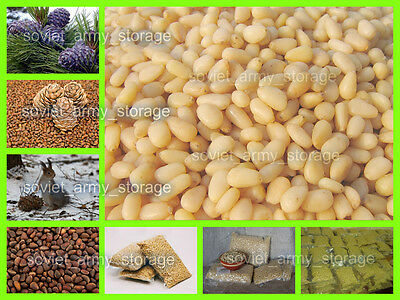 Pine nuts Siberia without shell. Fresh 2016! High quality! Handmade processing!