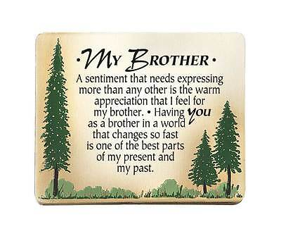 Brother Plaque Sign Frame Birthday Christmas Gift Sibling Appreciation 2609