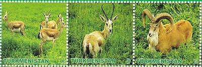 Turkmenistan - Animals 3 v - 2009 Lemberg-Zp