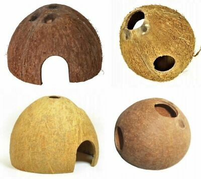 Coconut Cave,shelter , Perfect Decoration For  Any Aquarium!