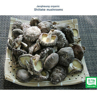 100% Natural Organic Dried Shiitake Korea Cypress Shiitake Mushroom