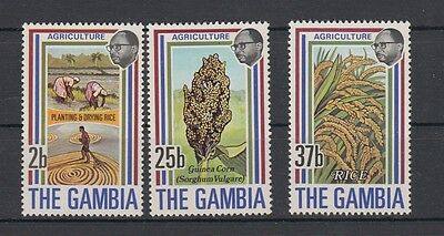 Gambia 1973 agricoltura 276-78 MNH