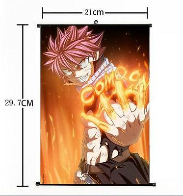 Hot Japan Anime Fairy Tail  Natsu Dragneel Home Decor Poster Wall Scroll 21*30