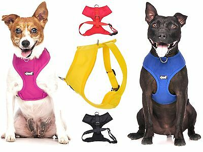 Dogs Best Selling Non Pull Front and Back Ring Vest Harness Padded Waterproof