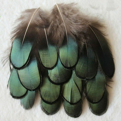 Wholesale 10-100PCS Beautiful Pheasant tail & Peacock Feathers 4-10cm/2-4inches
