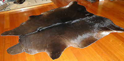Smooth Soft & Silky A Lovely Dark Rich Chocolate Coloured Brazilian Cowhide Rug