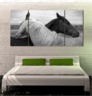 "Arabian Horses GIANT WALL POSTER 24""x48"" 3 PIECES ART PRINT 200al"