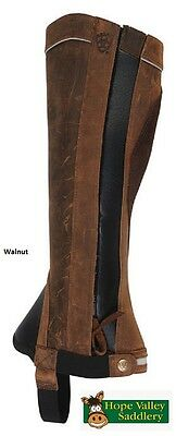 SALE! Ariat Telluride Unisex Riding Chaps. Two Colours Available.