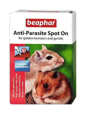 Spot on Anti-Parasite Flea Treatment for Gerbils & Hamsters 4 Week Protection