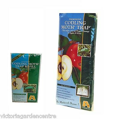 Agralan Pheromone Codling Moth Trap for Apples & Pears - Trap or Refill