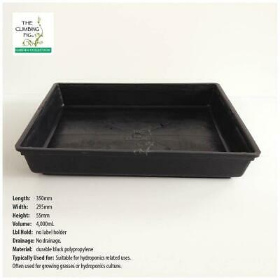 Solid Hydro SEEDLING TRAYS (4, 8 or 20pack). Propagation punnets tube pots jiffy