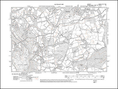 Ramsnest Common, Haslemere (east) 1920 - old map Surrey 45-SW