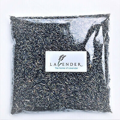 25g 50g 100g Kent Dried Lavender Strong Fragrance Supplied In Sealed Bag
