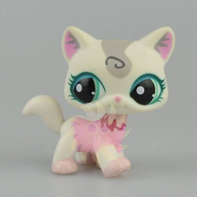 Hasbro Littlest Pet Shop Collection LPS Figure Loose Toy Rare Walk Cat #1699