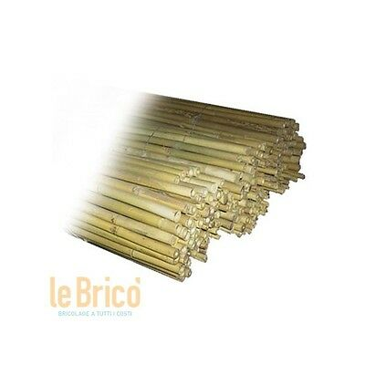 Canne Bamboo Canne Bamboo Mm. 22/24 Cm. 180 Il Campo 50 Pezzi