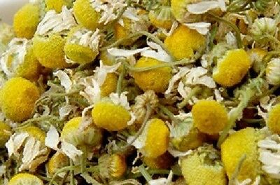 Dried Chamomile - Camomile - Flowers - Sleep - Herbal - Tea - Pillow - Calm