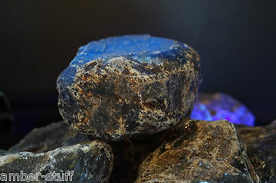 Blue fluorescence fossil raw amber Indonesia single rough pieces £6.95 each