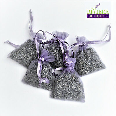 10 High Quality Fresh Lavender in Hand Made Lilac/Silver Hearts Organza Bags