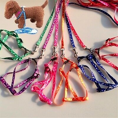 Small Pet Dog Cat Puppy Kitten Rabbit Dog Harness Collar leash lead in 7 colours