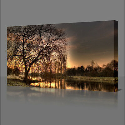 LARGE 30 Inch LANDSCAPE GOLDEN TREE WATER LAKE SUNSET CANVAS WALL ART PICTURE