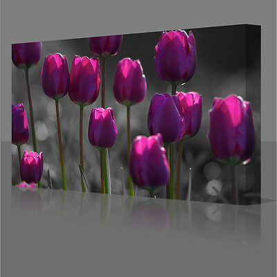 Large 30x20 Inch Purple Tulips Flowers Framed Canvas Wall Art Picture Print