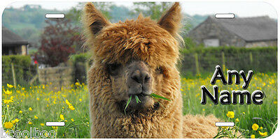 Alpaca Personalized Any Name Novelty Car License Plate P01