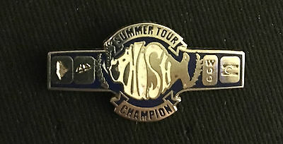 "Phish-""Summer Tour Championship Belt""  Pin limited edition Sold out"
