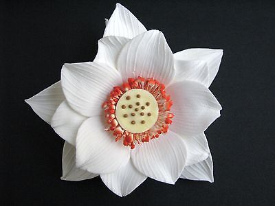 BOX SET Cake Flowers/Gum Paste Flowers/Gum Paste/Cake Sugar Flowers - Lotus