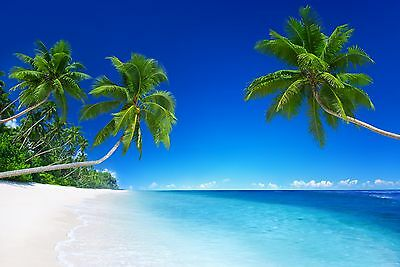 Tropical Beach Sand Sea Blue Waters Holiday Picture Fabric Wall Sticker Poster