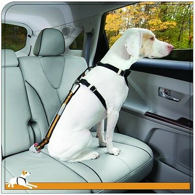 Kurgo Direct to Seatbelt Tether Seatbelt for dogs NEW