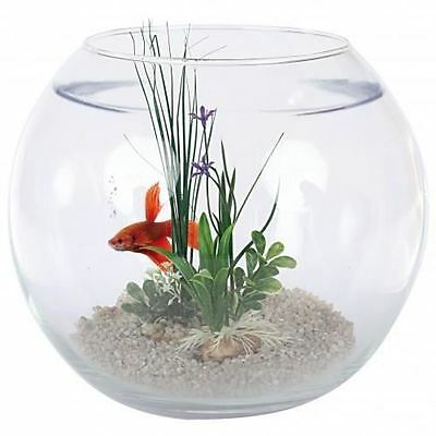 AQUARIUM KIT BOULE AQUARIUM POISSON ''NEPTUNE'' Réf Z300700ani