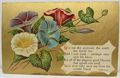 Sheepranch 1911 Flower Blumen - USA Postcard AK Postkarte (A2460)