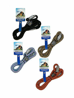 Cesar Millan Nylon Training Lead- Trainingsleine Hundeleine