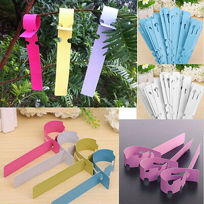 100pc Garden Plant Pot Markers Plastic Stake Tied Tags Court Nursery Seed Labels