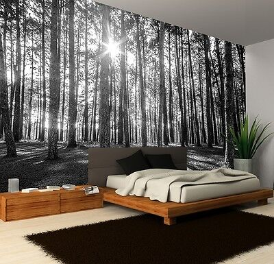 B&W SUNNY FOREST MORNING TREES Photo Wallpaper Wall Mural WOODLAND ART 335x236