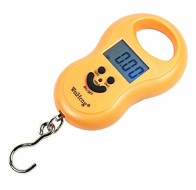 50Kg / 5g-10g Portable Digital Hanging / Fishing Scale w/Lighted LCD Display